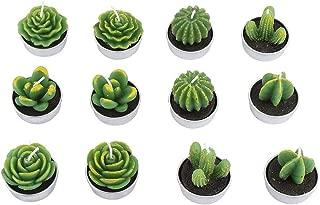 Duokon 12 Unids Hecho A Mano Mini Cactus Velas Tealight Sin Llama Casa Vela Suculenta para Fiesta de Boda SPA Decoración Regalos