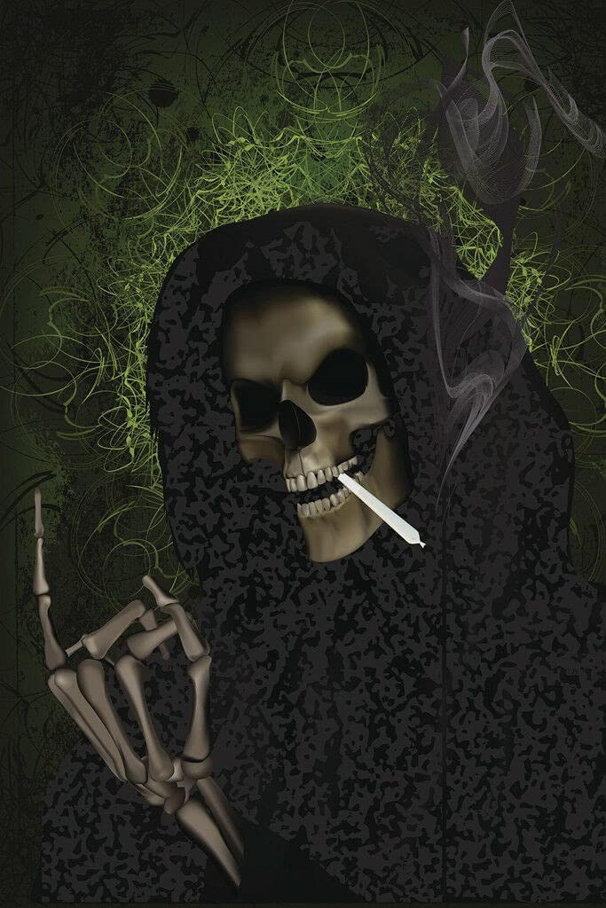 342887 Grim Reaper Smoking Weed Decor Wall 16x12 Poster Print