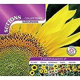 Suttons Seeds 139800 Miscela di semi di girasole