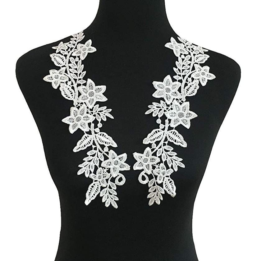 1 Pair Beautiful Black Flower Embroidery Patch Neckline Lace Applique Trims Collars Sewing DIY Crafts (Style E White)