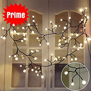 YMing Globe String Lights, 8.3Ft 8 Modes 72 Led Decorative Starry Fairy Lights Plug in, Halloween Room Decoration Light, for Christmas Patio Garden Wedding Party, Warm White