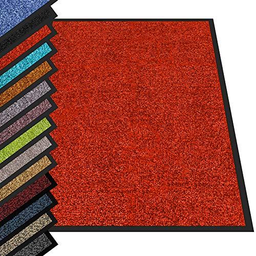 etm® Schmutzfangmatte - Fußmatte in vielen Größen - Türmatte Fußabstreifer für Haustür innen und außen (Rot, 60x90 cm)