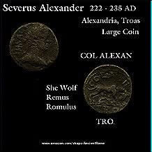 222 GR Severus Alexander 222 AD. SHE WOLF. Alexandria, Troas Mint. Imperial Greek Bronze Coin. Bronze Good