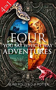 Box Set: Four You Say Which Way Adventures: Pirate Island, In the Magician's House, Lost in Lion Country, Once Upon an Island by [DM Potter, Blair Polly]