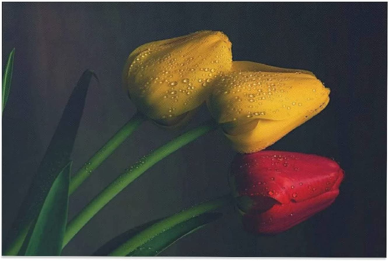 Wdkwkl Tulip Yellow Indefinitely Red 25% OFF Water Be Background Droplets Black