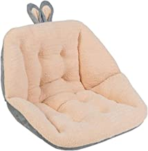 Seat Pads Stoelkussens Pluche Stoel Pad met Lumbar Back Support Reversible Thicken Patded Seat Cushion Chair Pillow voor O...