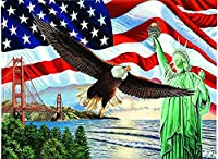 DIY 5Dダイヤモンドペインティングフルラウンドドリルキットラインストーンピクチャーアートクラフトホームウォールデコレーション(アメリカ国旗フライングイーグル-自由の女神)-40x50cm