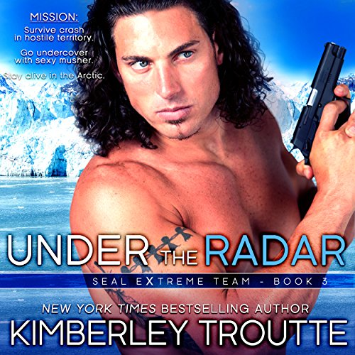 Under the Radar audiobook cover art