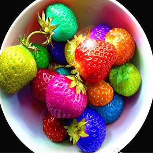 couleur pluie bow graines de fraise fruit multicolore semences fraises graines de fleurs jardin pots et jardinières - 100pcs / lot