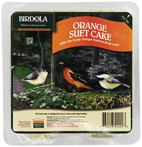 BIRDOLA pour gâteau de suif pour Oiseaux, 326 Gram