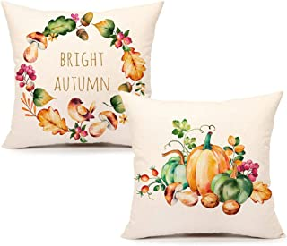 4TH Emotion Watercolor Fall Pumpkin Throw Pillow Cover Farmhouse Autumn Cushion Case for Sofa Couch 18 x 18 Inches Cotton Linen Set of 2