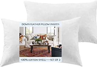Yesterdayhome Set of 2-16x26 Oblong Pillow Inserts-Down Feather Pillow Inserts-White