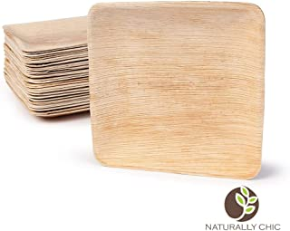 eco friendly disposable plates wholesale