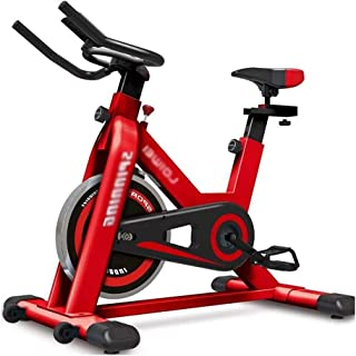 AWSAD Sport Exercise Bike Workout Gym Bicycle With Reinforced Quiet Fly Wheels, Suitable for Gym Home Aerobic Exercise Equ...