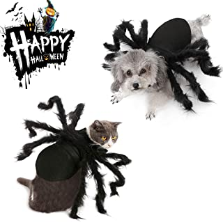 awesome pet costumes
