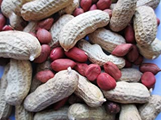 Tennessee Red Valencia Peanut (In shell) Untreated Seeds , Organically Grown