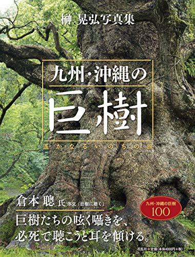 九州・沖縄の巨樹:遥かなるいのちの旅の詳細を見る