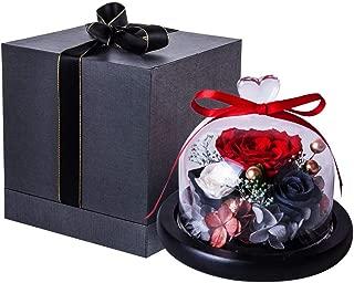 Best donna rose flower Reviews