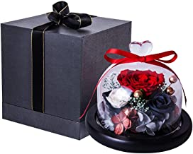 Eternal Rose- Preserved Flower Rose Handmade Fresh Flower Rose with Beautiful Creative Heart Design a Gift for Valentine's Day Mother's Day Christmas Anniversary Birthday Thanksgiving Girls(Red)