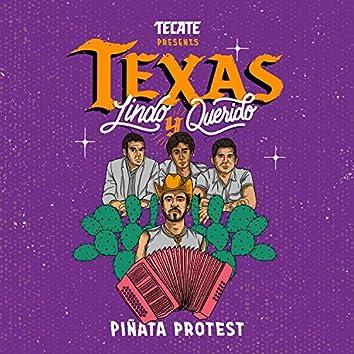 Texas Lindo y Querido
