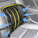Teraves Lumbar Support for Office Chair, Car Seat or Home Chair, Double Breathable Mesh Back Support Cushion for Driving Comfort and Posture Support