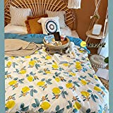 haoyunlai Colcha Acolchada para Cama Edredón de Aire Acondicionado Fino edredón de Verano Solo Doble Transpirable sofá Oficina Cama de Viaje-Un limón_200x230cm