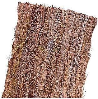 Amazon.es: brezo