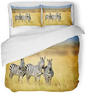 Semtomn Decor Duvet Cover Set Twin Size Zebra in The Grass Nature Habitat National Park 3 Piece Brushed Microfiber Fabric Print Bedding Set Cover