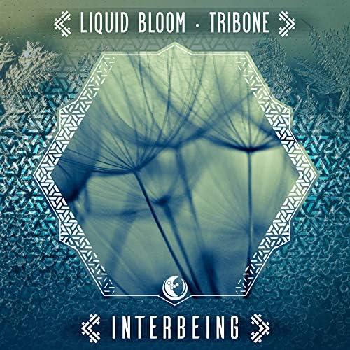 Liquid Bloom & Tribone