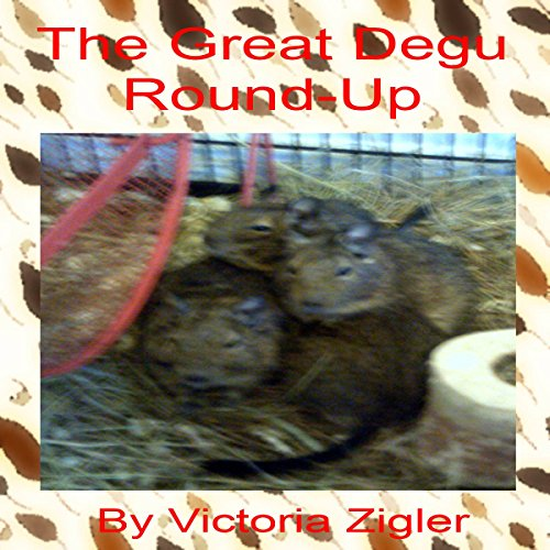 The Great Degu Round-Up cover art