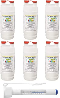 King Technology Pool Frog Mineral Purifier Replacement Chlorine Bac Pac 6 Pack (Bundled with Pearsons Thermometer)