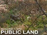 September 7 - Public Land: Scouting the 'Buck Nest'