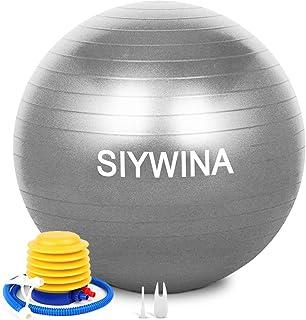 SIYWINA Träningsboll yoga boll stol 55 cm, 65 cm födelseboll moderskap boll med snabb pump anti-bristning för pilates, fit...