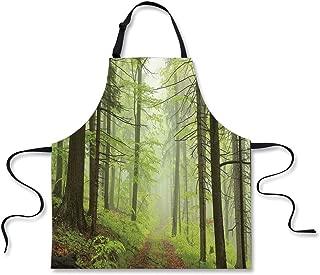 iPrint Kitchen Apron,Outdoor,Trail Trough Foggy Alders Beeches Oaks Coniferous Grove Hiking Theme,Light Green Light Yellow,Fashion Apron.29.5