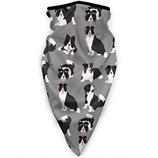 Border Collie Dog Cute Face Mask Neck Gaiters Bandana Scarf Balaclava Multifunctional Headwear for Outdoor Sports Black