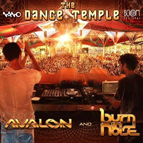Avalon & Burn in Noise