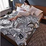 Bicaquu Eisseidenmatte, Bequeme Steppdecke, Sommerdecke, leichtes faltbares Arbeitszimmer Hauptwohnzimmer für Schlafzimmer(200 * 230cm)