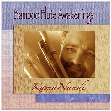 Bamboo Flute Awakenings