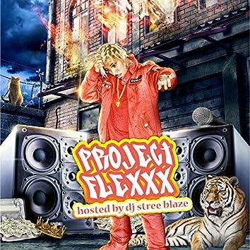 Project Flexxx