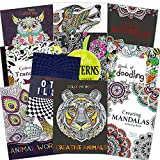 Adult Coloring Books Super Set -- 10 Deluxe Coloring Books for Adults and Teens