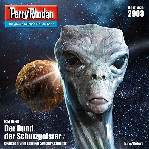Der Bund der Schutzgeister audiobook cover art