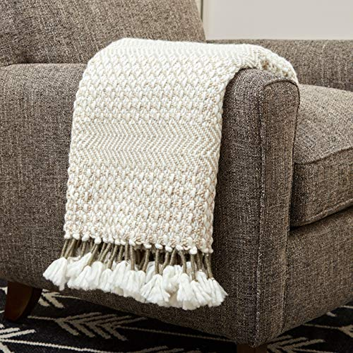 Amazon Brand – Rivet Modern Hand-Woven Stripe Fringe Throw...