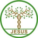 Jesus Genealogy