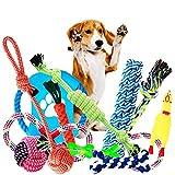 TOOGOO Juguete para Masticar Perros, Juego de Entrenamiento para Perros con Cuerda, Pelota Y Juguetes para Perros Peque?os Y Medianos, 12 Paquetes de Juegos de Juguetes para Mascotas