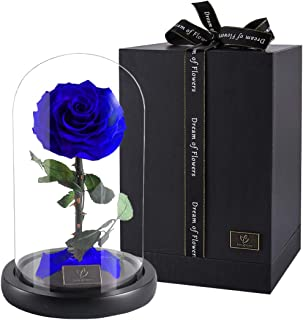 DREAM OF FLOWERS Beauty and The Beast Rose,Forever Rose, Enchanted Rose, Glass Dome Black Wood Base, Valentine's Party Gifts, Wedding Gifts, Best Gift for Her (Blue)