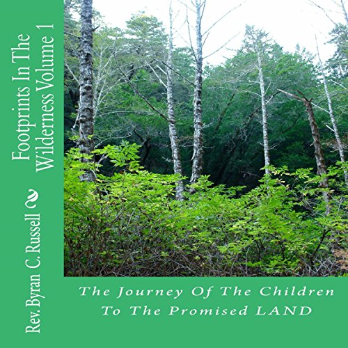 The Journey of the Children to the Promised Land audiobook cover art