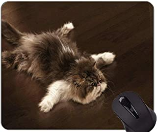 Mouse Pad with Stitched Edge,Fluffy Humor Kitten Lying Down Cat Non-Slip Rubber Base Mousepad