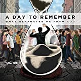 Songtexte von A Day to Remember - What Separates Me From You