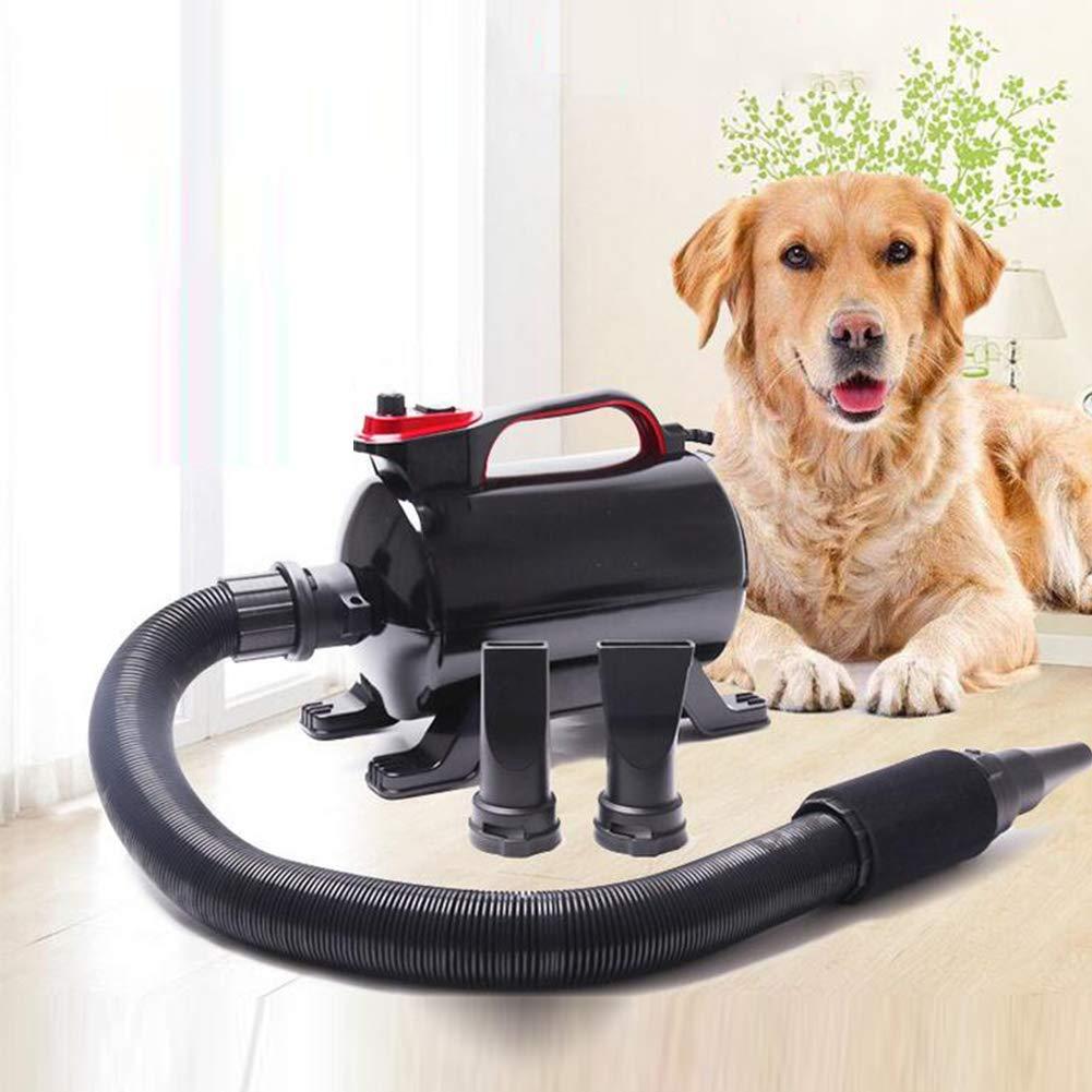Cxjff Secador de Pelo Profesional for Perros, soplador de Agua for Mascotas, 2800 W, silenciador de Alta Potencia, Perro Grande, máquina Especial for soplado de Perros: Amazon.es: Productos para mascotas