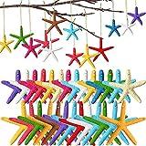AETOK 30 piezas de 13 colores 3.14 y 2.3 pulgadas lápiz de resina con cuerda para árbol de Navidad, decoración de la playa, manualidades, pecera